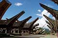 Wonderful Toraja Tours 3 Days / 2 Nights